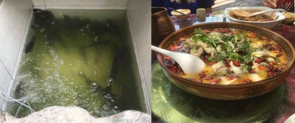 Erhai_hu_fish_soup